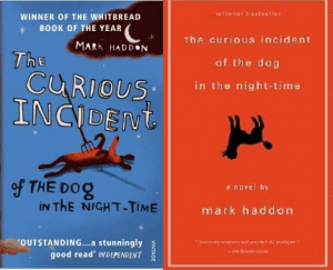 Curious Incident Of The Dog In The Nighttime Book Cover