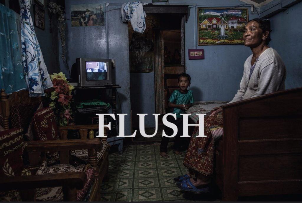 flush-flyer