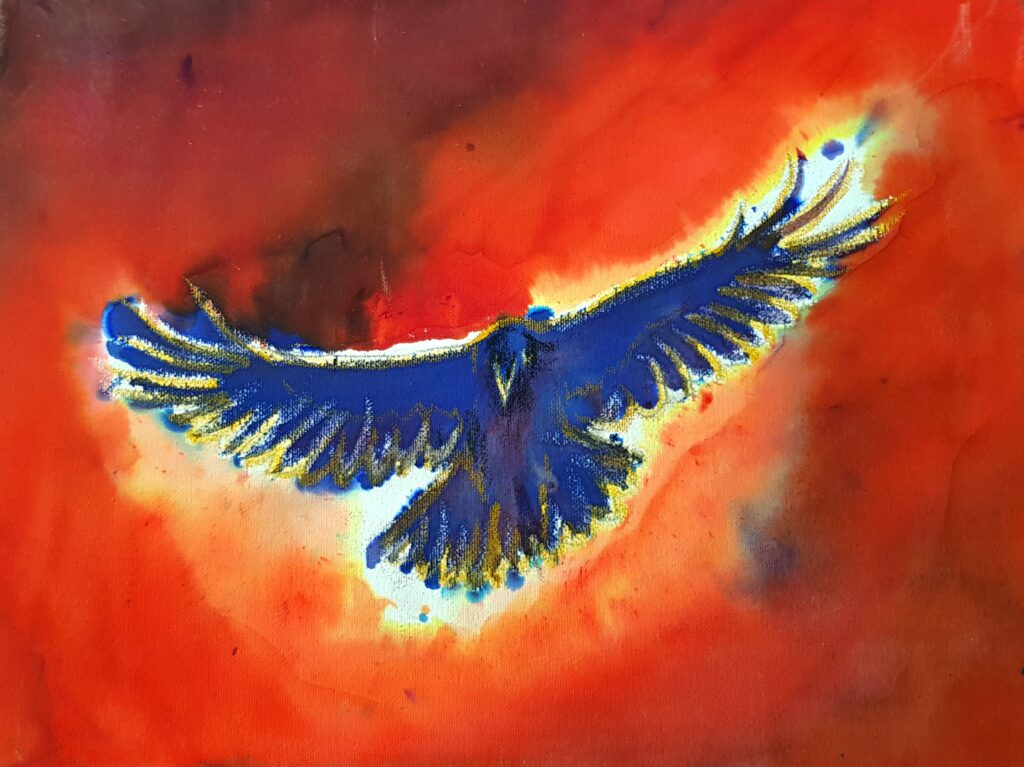 View from underneath of royal blue crow, edged in yellow. Background shades of reds with black.