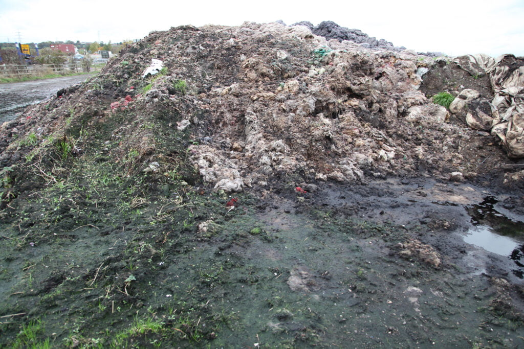 A heap of shoddy material, with plants and organic matter growing all over it.